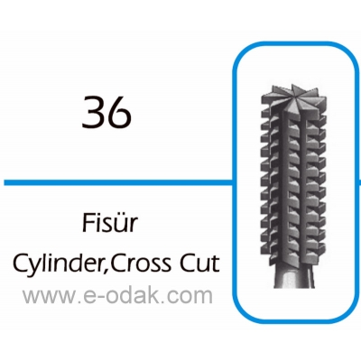Cylinder,Cross Cut